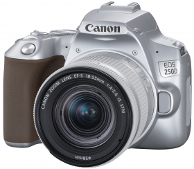 CANON Eos 250D + 18-55 IS STM Argent