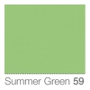 COLORAMA Fond de Studio 1.35 X 11m Summer Green