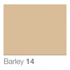 COLORAMA Fond de Studio 2.72 X 11m Barley (DS)