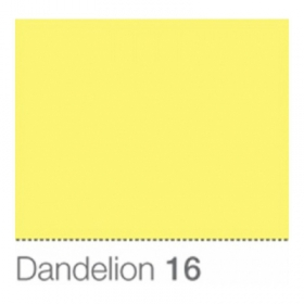 COLORAMA Fond de Studio 2.72 X 11m Dandelion (DS)