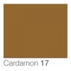 COLORAMA Fond de Studio 2.72 X 11m Cardamon (DS)