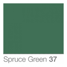 COLORAMA Fond de Studio 2.72 X 11m Spruce Green (DS)