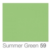 COLORAMA Fond de Studio 2.72 X 11m Summer Green (DS)