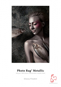 HAHNEMÜHLE Papier Photo Rag Metallic 340g A2 25 F (destock)